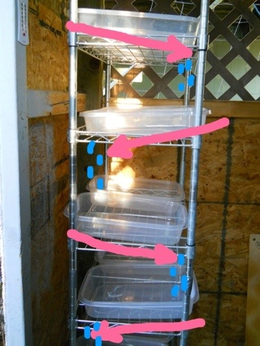 Livestock Sprouted Fodder System Getting Started